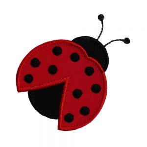 Ladybug Beetle-0